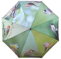 Regenschirm – Vogel
