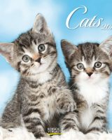 Cats Kalender 2018
