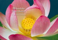 20 herrliche Blumenkarten