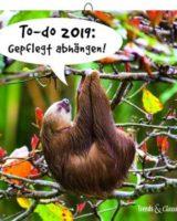 Faultier Kalender 2019