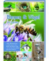 Bienen und Vögel im Garten